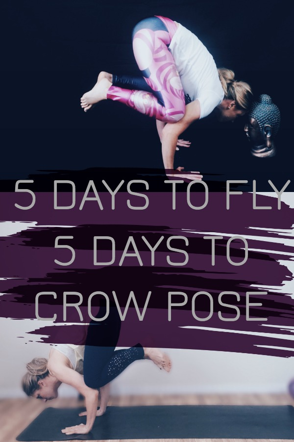5 Days to Fly Crow Pose For beginners